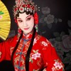 Domainers: The ultimate guide to Chinese culture, names and numbers