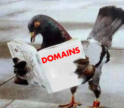 Dawn of a new era: Pigeon Droppings and Domaining