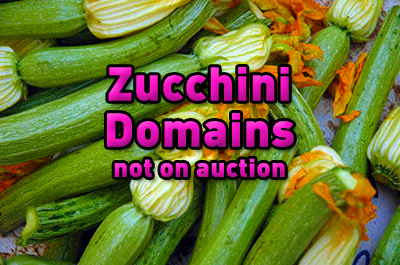 The FULL list of Zucchini domains not auctioned at Latona's