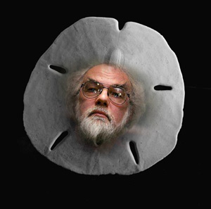 Father Domainicus: Investment for 2012 and beyond - The Sand Dollar