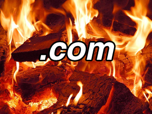 Domainers to burn domains in protest of bad economy