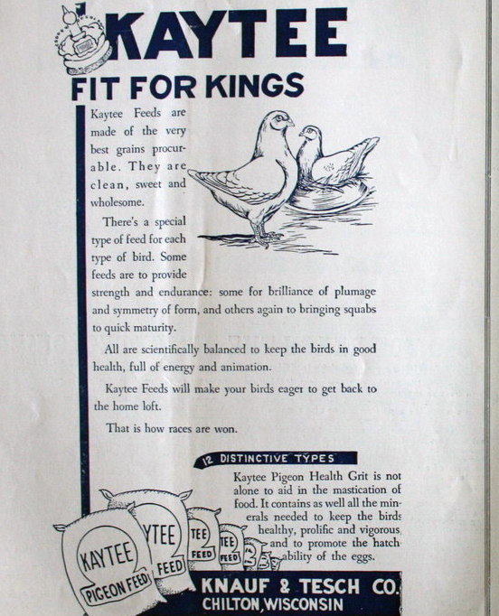 Fit for a King: Pigeonfeed!
