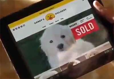 GoDaddy pulled their puppy mill commercial for the Super Bowl.