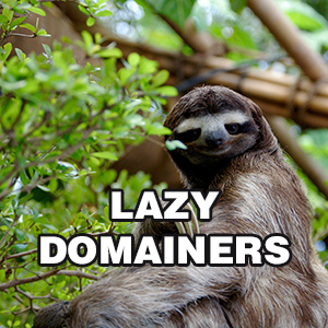 Lazy Domainers are everywhere. Original photo: Sergiodelgado.