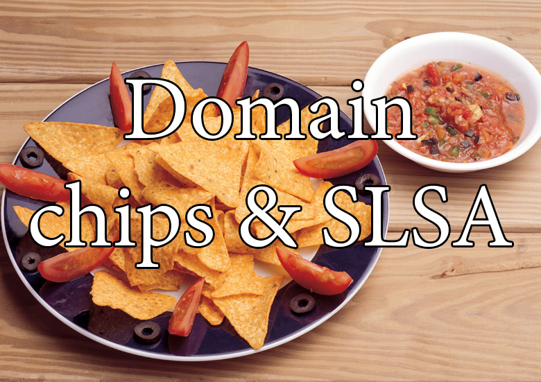 domain-chips-slsa