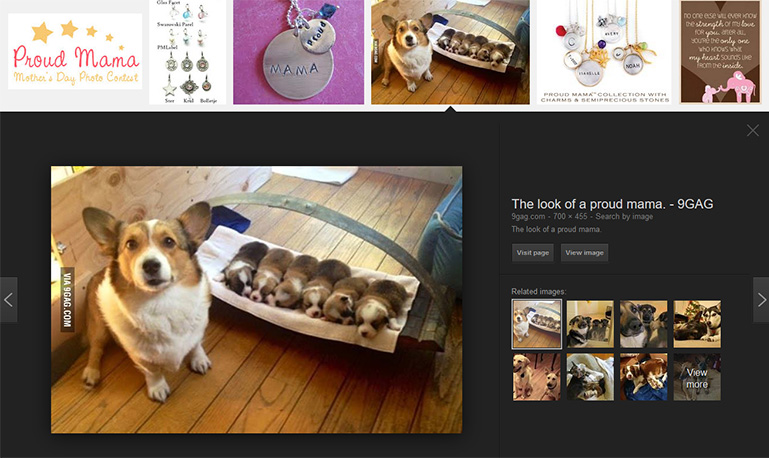 Proud Mama: A corgi bitch as one of the image results in Google.