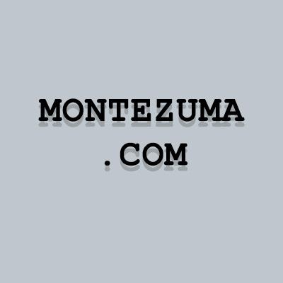 Montezuma.com UDRP failed.