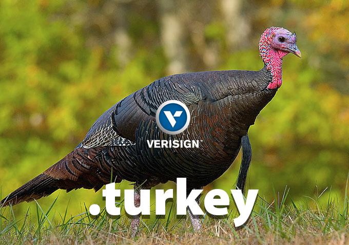 Dot .turkey from Verisign