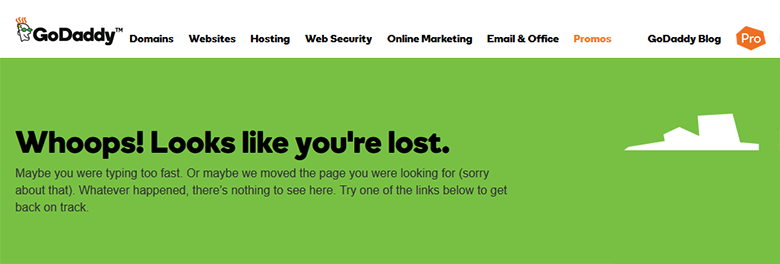 GoDaddy WHOIS : Are we lost?